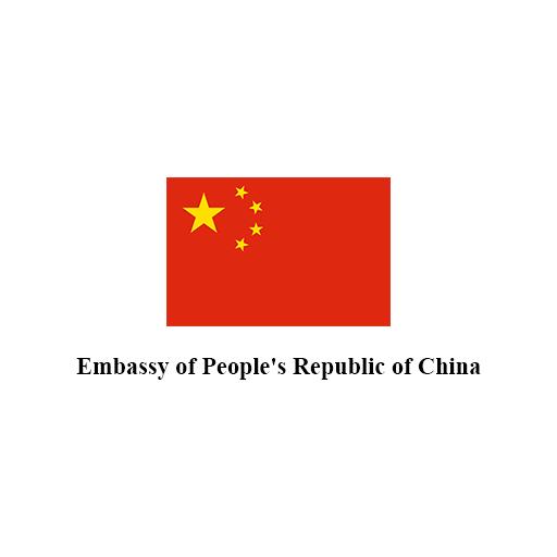 PROPOSE LOGO CHINESE EMBASSY 11